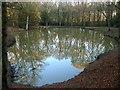 TQ2926 : Pond, Lowlands Wood : Week 49