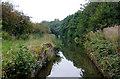 SJ9170 : Former Woodhouse Green Bridge near Oakgrove, Cheshire by Roger  Kidd
