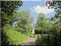 SX5185 : Granite Way north of Lydford by Derek Harper