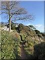 SX9262 : Rock End Walk by David Smith