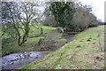 SP3226 : Footbridge over River Glyme east of Glyme Farm by Roger Templeman
