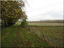 TL2036 : Footpath from Stotfold by David Purchase