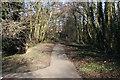 SO8516 : Glevum Park, Abbeydale, Gloucester by Colin Manton