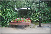 SE3457 : Flowers, Knaresborough Station by N Chadwick