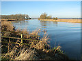 TG3702 : View along the River Yare : Week 1