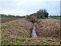 TL6044 : River Granta by Robin Webster