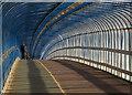 TL4657 : Winter sunlight in the cycle bridge : Week 2