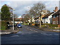 SP1488 : Hartshill Road houses by Richard Law