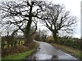 SJ3477 : Heath Lane, looking north from a 36 metre spot height by Christine Johnstone