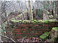 TG1522 : Brick-built blast shelter by Evelyn Simak