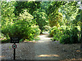 TQ0182 : Path into the Temple Gardens by Robin Webster
