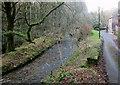SX2158 : West Looe River at Churchbridge by Derek Harper
