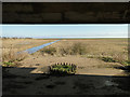 TF3942 : Gunners eye-view from heavy artillery shore battery by Adrian S Pye