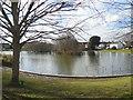 TQ5909 : Common Pond, Hailsham by Paul Gillett