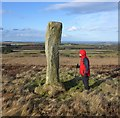 NU1127 : Long Stone standing stone on Longstone Hill, Lucker Moor : Week 7