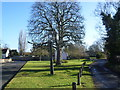 TL4943 : The village green at Ickleton by Marathon