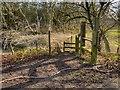 SJ8180 : Stile and Footpath, Saltersley Moss by David Dixon