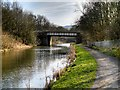 SD8132 : Leeds and Liverpool Canal approaching Bridge#124C by David Dixon
