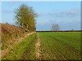 SP7906 : Farmland, Longwick by Andrew Smith