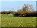SP7918 : Farmland, Hardwick by Andrew Smith