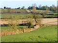 SP8021 : Farmland, Whitchurch by Andrew Smith