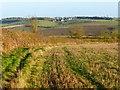 SP8120 : Farmland, Hardwick by Andrew Smith