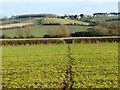 SP8220 : Farmland, Whitchurch by Andrew Smith