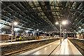 SJ3590 : Liverpool Lime Street Station : Week 11
