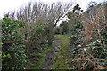 SH5184 : Anglesey Coast Path by N Chadwick