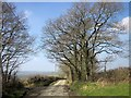 SX2589 : Lane near Penrose Green by Derek Harper