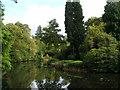 SJ7481 : Golden Brook, Tatton Park Gardens, Knutsford, Cheshire by Janusz Lukasiak