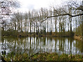 SP7610 : Biggin Pond by Robin Webster