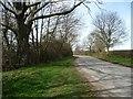 NZ4004 : Minor road heading to Appleton Wiske by Christine Johnstone