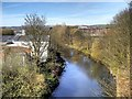 SD7910 : River Irwell, Upstream from Daisyfield Viaduct by David Dixon