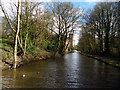 SJ9378 : Macclesfield Canal:  Approaching Clarence Mill by Dr Neil Clifton