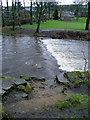 SD9905 : Obscured stepping stones, River Tame by Peter Holmes