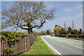 SJ6181 : Tarporley Road by Ian Greig
