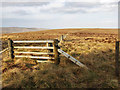 NS7001 : Moorland fences on Black Rig by wrobison