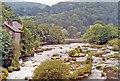 SJ2142 : Llangollen, 1992: upstream on River Dee by Ben Brooksbank