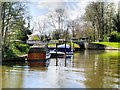 SU9777 : River Thames near Romney Lock by David Dixon