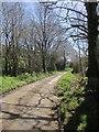 SX3579 : Lane to Lowleybridge by Derek Harper