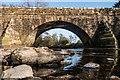 SS8982 : Pen y Cae Bridge : Week 16