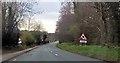 SJ6171 : A556 below Forest Hill by John Firth