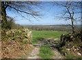 SX3772 : Countryside near Stoke Climsland by Derek Harper