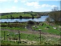 SE0733 : The two 'legs' of Doe Park Reservoir by Christine Johnstone