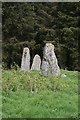 NJ9547 : Aikey Brae Recumbent Stone Circle (3) by Anne Burgess