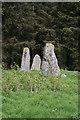 NJ9547 : Aikey Brae Recumbent Stone Circle (3) by Anne Burgess