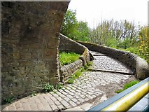 SJ9494 : Passing under Captain Clarke's Bridge by Gerald England