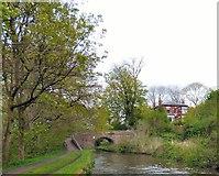 SJ9494 : Captain Clarke's Bridge by Gerald England