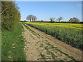 TL3658 : Bridleway to Hardwick by Hugh Venables
